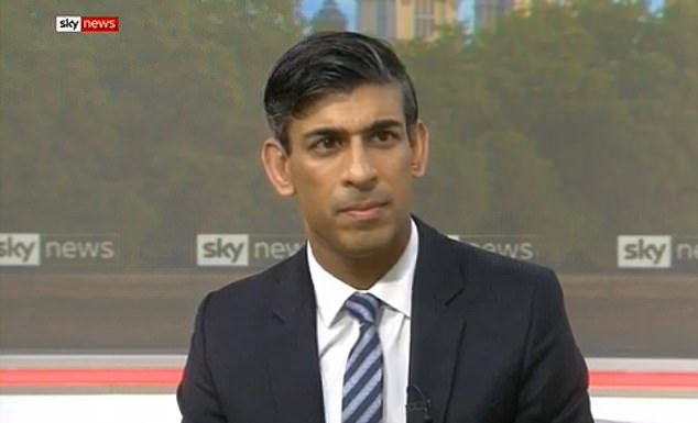 Rishi Sunak hints tax rises will be DELAYED amid layoffs by firms 6
