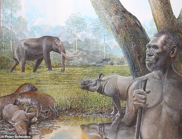 Ancient humans and giant beasts 'killed off by climate change', study finds  1