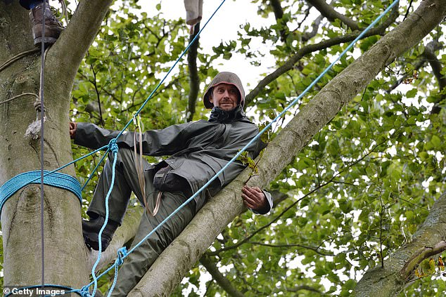 Swampy and Son:16-year-old HS2 protestor joins his father living up a tree 3