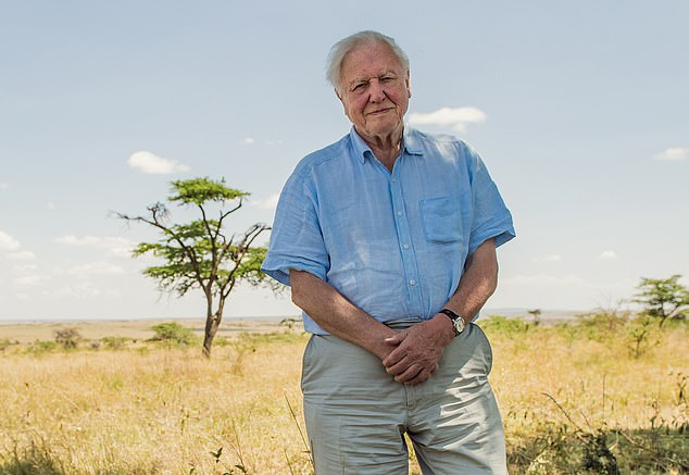 Sir David Attenborough says the 'excesses' of capitalism must be curbed to protect nature 4