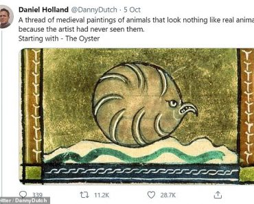 Examples of medieval drawings of animals that look nothing like the living thing 7