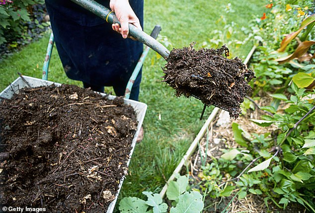 Garden centres struggle to source organic mulch and due to Covid lockdown supply chain issues 1