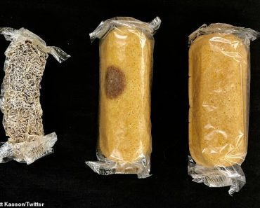 Eight-year-old 'mummified' Twinkies debunk myth that they stay fresh forever 3