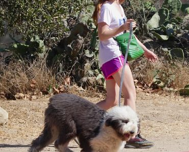 Isla Fisher cuts a very eye-catching figure in bright workout clothes while hiking with her dog 8