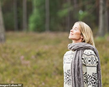 And breathe... LOUISE ATKINSON tests out the latest ways to purify the air around you 1