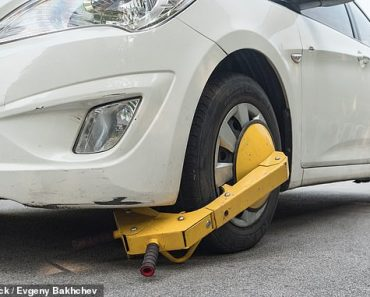 AA boss sounds warning as parking firms lobby to be allowed to clamp again 3