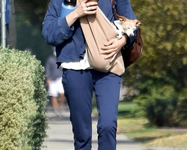 Scout Willis dons a monochromatic blue outfit as she carries multiple drinks and her dog 2