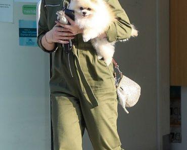Kelly Osbourne wears green jumpsuit and sports purple hair as she picks up Pomeranian from groomer 1