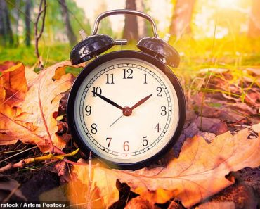 PETER HITCHENS: Let's turn back time - to when we didn't mess up our clocks  4