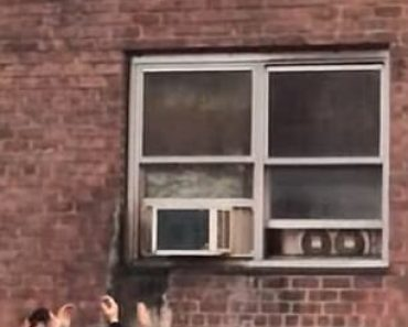 Moment cat jumps to safety from second-story NYC apartment window as flames lick its paws 8